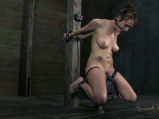 Упругая маленькая грудь порно